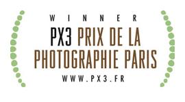 PX3 Prix de la Photographie Paris 2008 Image